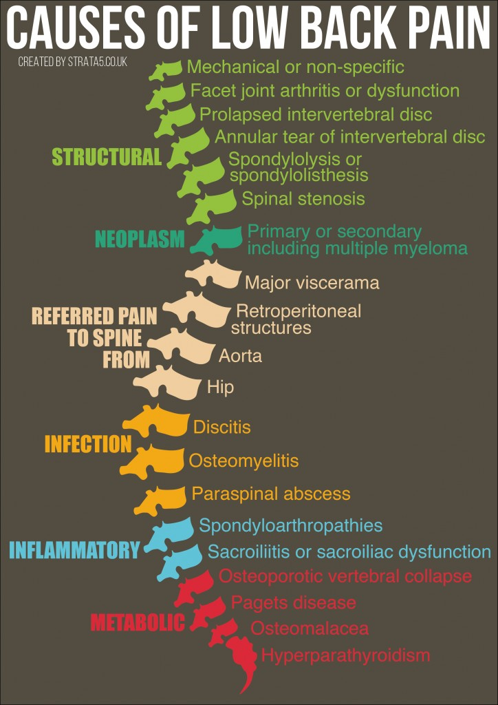 Causes of low back pain-01